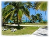 Beach South Andros Bahamas